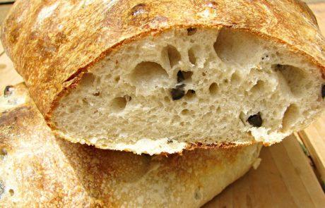 לחם מחמצת שאור עם זיתים שחורים ובונוס- טפאנד זיתים ירוקים וכוסברה